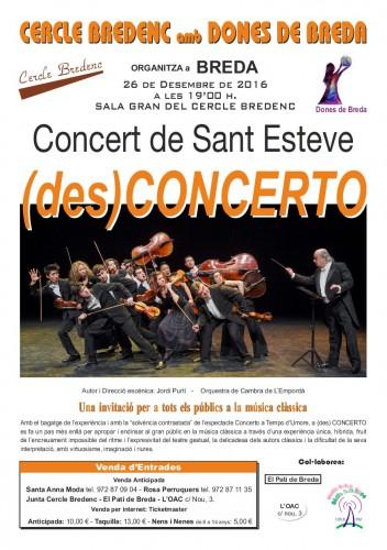 Concert_St_Esteve2016_A-5